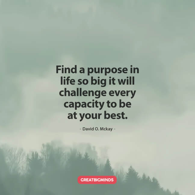 find purpose in life
