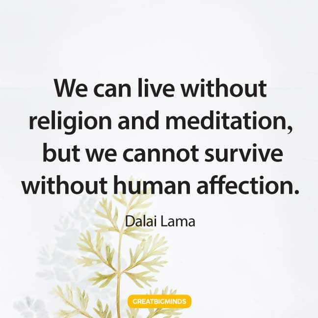 affection dalai lama quotes
