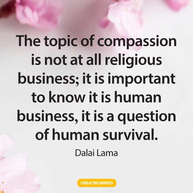 compassion dalai lama quotes