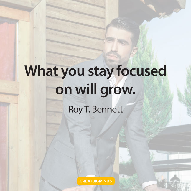 grow stay focused quotes