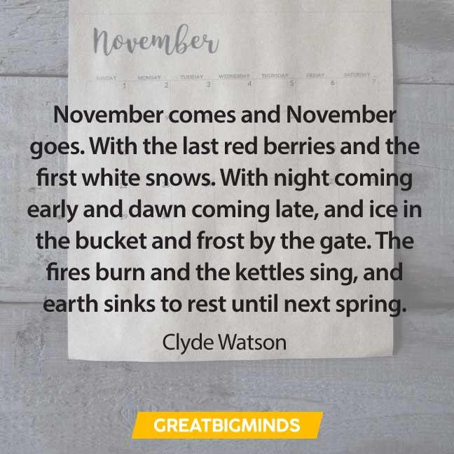 03-november-quotes