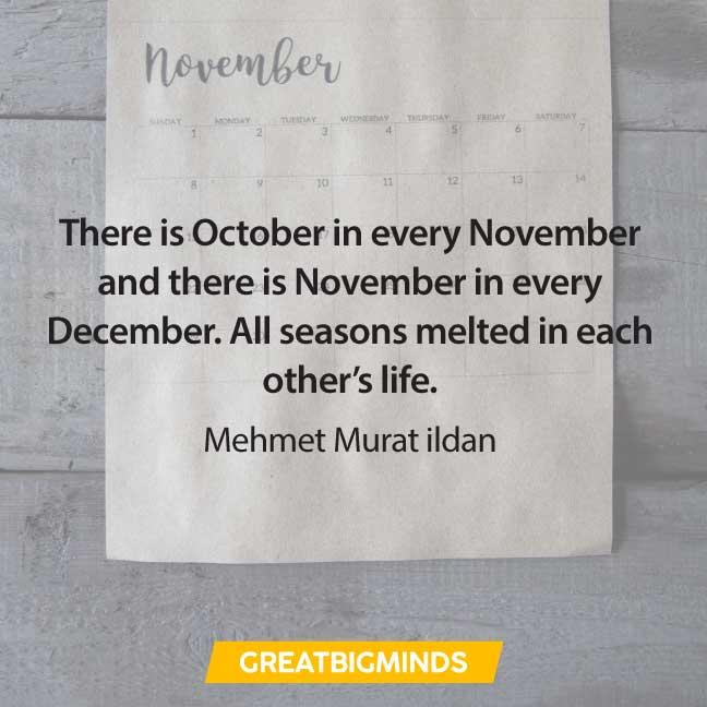 07-november-quotes