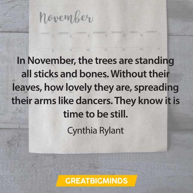 19-november-quotes