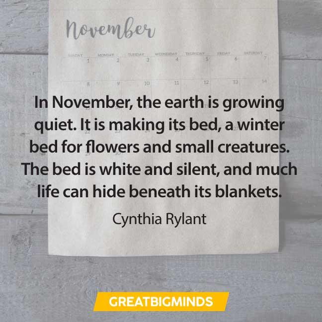 22-november-quotes