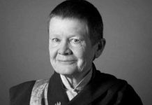 pemo chodron quotes great big minds